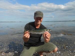 lystfiskeri i danmark